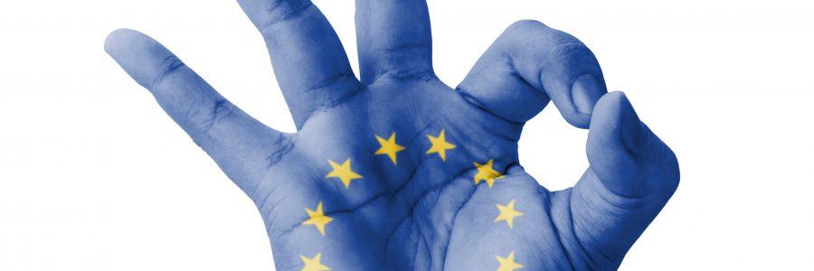 Movimento federalista europeo: Umbria più europea tra gli obiettivi per il 2021